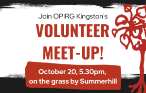 Volunteer meet-up on October 20, 5.30pm on the grass by Summerhill.